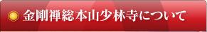 金剛禅総本山少林寺について