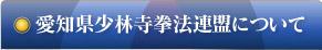 愛知県連について